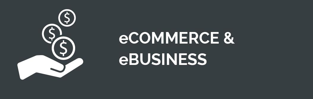 eCommerce und eBusiness
