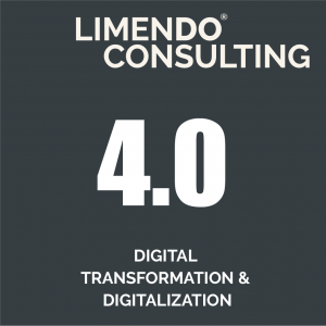 Limendo Consulting - digital transformation and digitalization