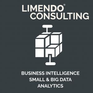 Limendo Unternehmensberatung - Business Intelligence small and big data analytics