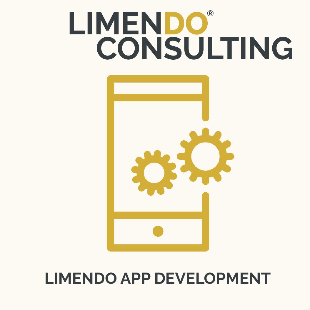 Limendo Consulting - App Development