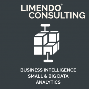 Limendo Consulting- business intelligence