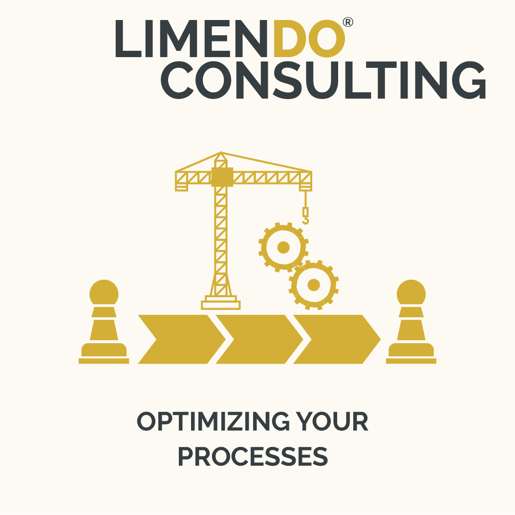 Limendo Consulting - Process Optimizing