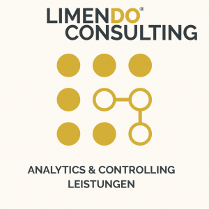 Limendo Consulting - Analytics & Controlling Leistungen