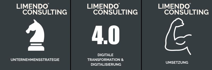 Limendo Consulting - Technik und Umsetzung