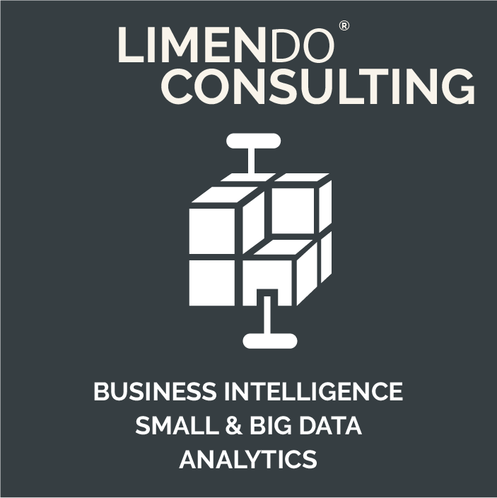 LIMENDO CONSULTING - BUSINESS INTELLIGENTE SMALL & BIG DATA ANALYTICS