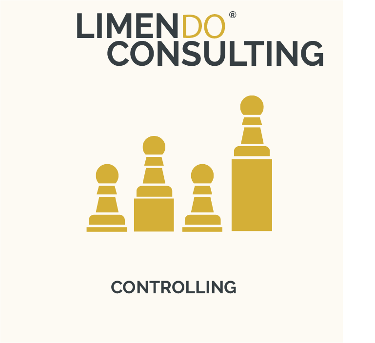 LIMENDO CONSULTING - CONTROLLING