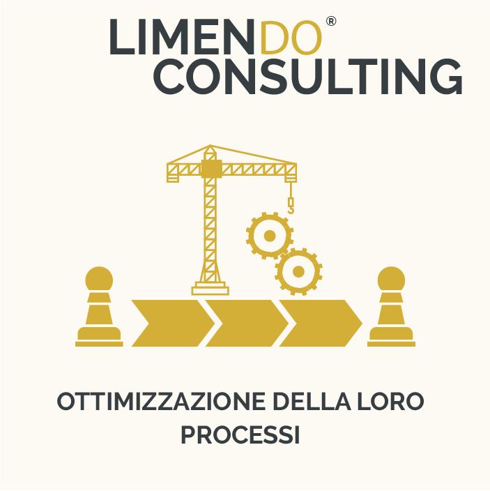 LIMENDO CONSULTING - OTTIMIZZAZIONE DELLA LORO